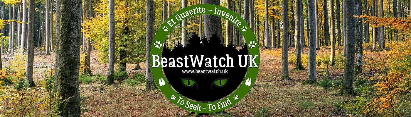 BeastWatch UK CIC